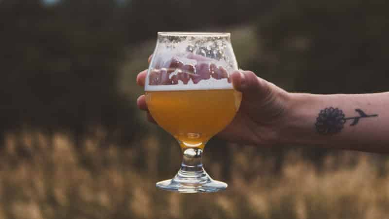 How to Always Brew a Clear Beer