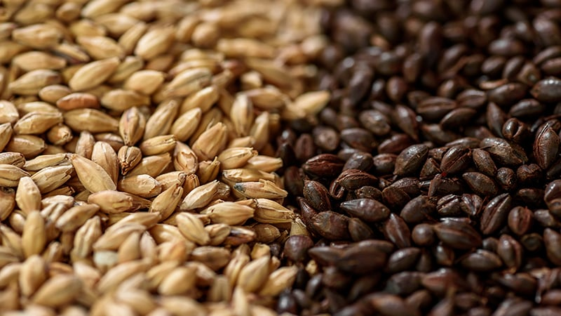 The Complete List of Every Malted Barley on Earth
