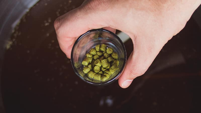 How and Why to do First Wort Hopping