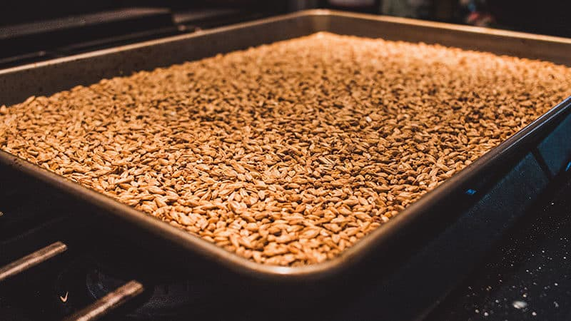 Roasting Your Own Malts